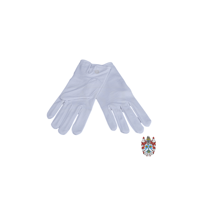 Cotton-Gloves-3_clipped_1